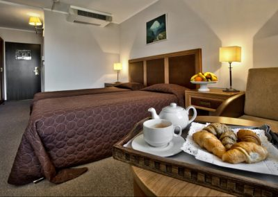 Interhotel Sandanski room 06