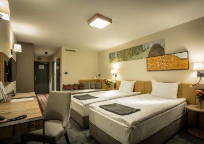 Rila Superior Room 01