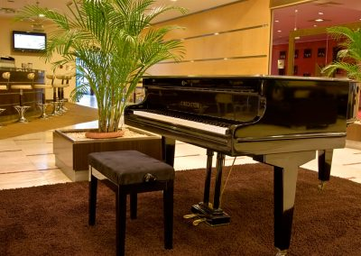 Vitosha Park Hotel 07