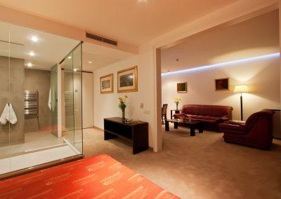 Vitosha Park Hotel Room 02