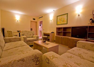 Vitosha Park Hotel Room 09
