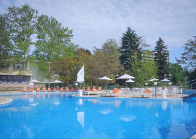 Lebed pool view 5
