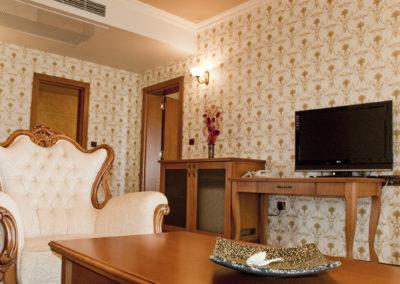 Hissar President room 03