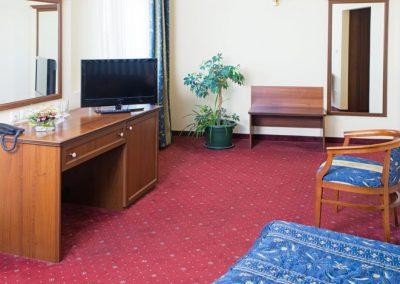Lion Sofia Room 02