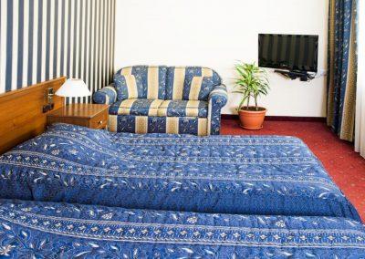 Lion Sofia Room 03