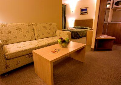Vitosha Park Hotel Room 11